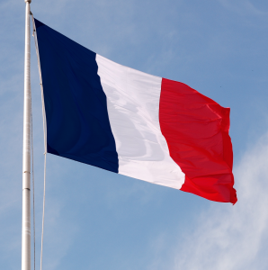 french flag 298x300 The French Way
